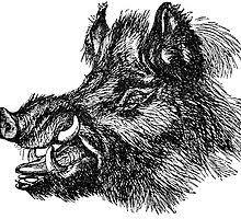 <b>Wild Boar Stickers</b> | Redbubble