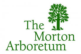 morton guide through the theory 3e