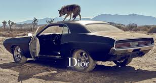 Image result for dior sauvage