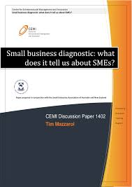 publication small business diagnostic what does it tell us about publication small business diagnostic what does it tell us about smes