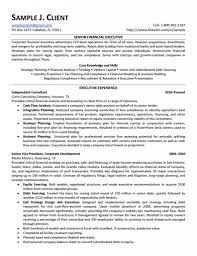 senior financial executive strategic planning nad financial resume sample finance