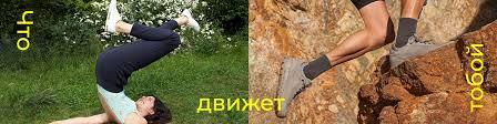 <b>ECCO</b> Россия   ВКонтакте