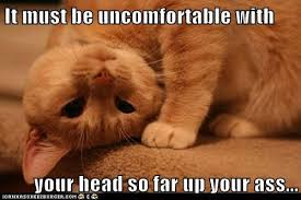 Uncomfortable Meme | Slapcaption.com | We Heart It | meme, cat ... via Relatably.com
