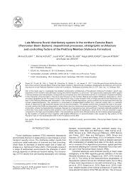 (PDF) Late Miocene fluvial distributary system in the northern ...