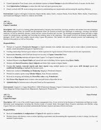 junior trader resume junior trader resume junior sales resume equity trader resume