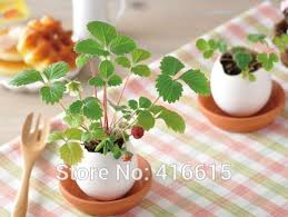 creative office planting potted mini green novelty lucky egg diy potted plants cultivated desktop micro landscape beautifying office bonsai grass pots planters mini