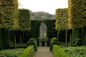 Small Picture Trimmed Box Hedges and Topiary English Gardens Design