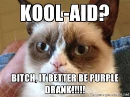 Kool-Aid? Bitch, it better be purple drank!!!!! - Angry Cat Meme ... via Relatably.com