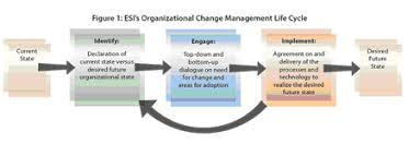 business analyst   the change management life cycle  involve your    the elements of change  processes  technology and people  and the phases of the organizational change management life cycle are closely linked