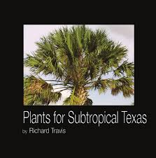 Plants around Gobabeb by Maja Sj  skog   issuu Plants for South Texas