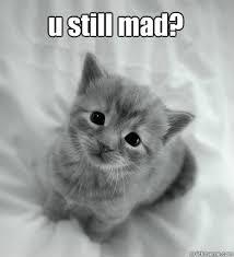 Sad Kitty memes | quickmeme via Relatably.com