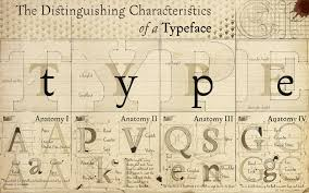 anatomy typography font alphabet drawings diagram typefaces    anatomy typography font alphabet drawings diagram typefaces     x      wallpaperup
