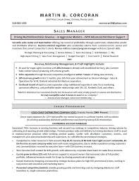 sales manager resume samples by Martin B  Corcoran   Writing