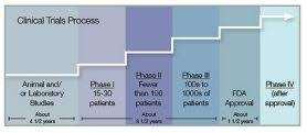Clinical Trial Phases | MD Anderson Cancer Center