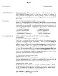 risk manager resume s management lewesmr sample resume resume template risk manager management sle