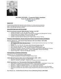 skills format resume template the combination resume template skills format resume template the combination resume template combination resume template word 2003 combination resume format pdf combination resume format