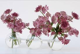 Resultado de imagen de decoracion floral minimalista