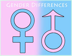 ethnographic notes unit women gender religion a the blue symbol represents males while the pink symbol represents females the colors