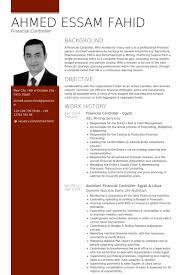 financial controller resume samples   visualcv resume samples databasefinancial controller egypt resume samples