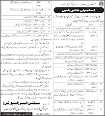 sports department sindh jobs 2014 advertisement jang sports department sindh jobs 2014 advertisement jang dawn newspapers
