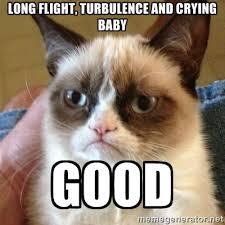 long flight, turbulence and Crying baby good - Grumpy Cat | Meme ... via Relatably.com