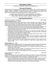 Sample It Resume Summary  sample resume with summary of     Perfect Resume Example Resume And Cover Letter