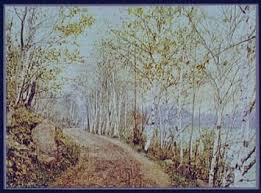 Image result for northern autumn