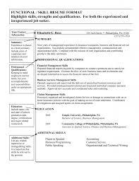 Resume Summary Of Qualifications  qualifications summary smlf