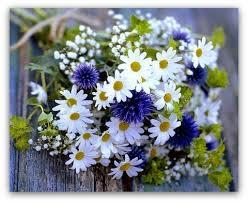 Znalezione obrazy dla zapytania kwiaty bukiet