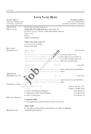 sample resume styles resume format  example