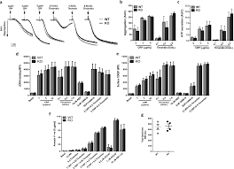 Loss of the mitochondrial kinase PINK1 does not alter platelet function