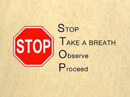 June 16, 2013 ~ S.T.O.P. (Stop, Take-a-Breath, Observe, Proceed)