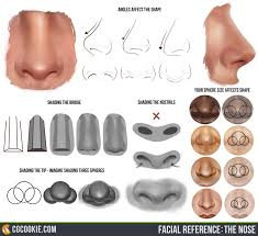 the nose reference cgcookie noseresource