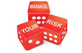 Image result for revenue risk