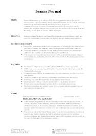 poor cv example    cv masterclassexample layout only