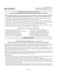 executive resume example senior executive resume senior it it resume examples
