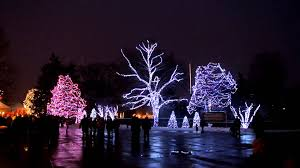 best images about reasons to move to toledo ohio 17 best images about reasons to move to toledo ohio festivals lake erie and before christmas