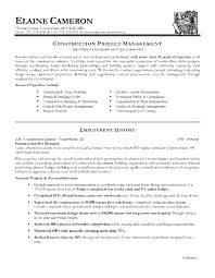 entry level project management resume examples resume examples 2017 11