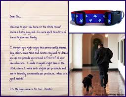 essays on pets essays on pets essay pet dog order essay my pet  essay my favorite pet dog essayessay on my favorite pet dog paragraph colored coded