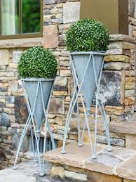 potted plants for patio