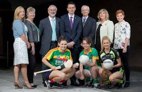 2 days left to apply for exciting job opportunity ladies gaelic on completion of this application form which must be returned to ali nolan the camogie association croke park dublin 3 or email to jobs camogie ie