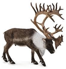 <b>Фигурка Collecta Северный олень</b> 88709 — купить по выгодной ...