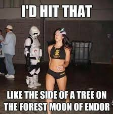 star-wars-endor.jpg via Relatably.com