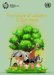 the future of wildlife is in our hands the future of elephants is activities and programs during world wildlife day concentrates in creating awareness among the general public and business corporations and calls for more