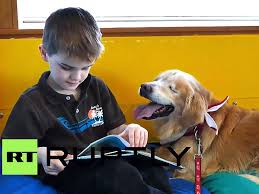 Image result for therapy dog smiley and children