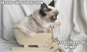 grumpy cat christmas meme | Cute Stuff / Geeky Inner-Self ... via Relatably.com