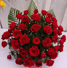 Image result for rose flower