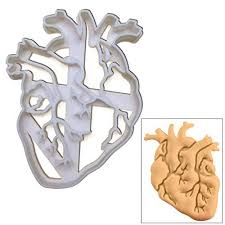 Anatomical Heart Cookie cutter <b>1 pc</b> Ideal for <b>Medical</b> themed party