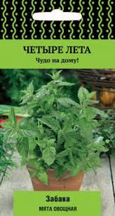 <b>Мята овощная Забава</b> — описание, отзывы покупателей в ...