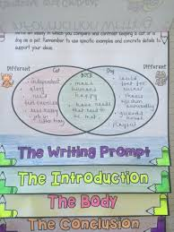 activities  writing prompts and student on pinterestscaffold the structure of a compare and contrast essay through each stage of the writing process